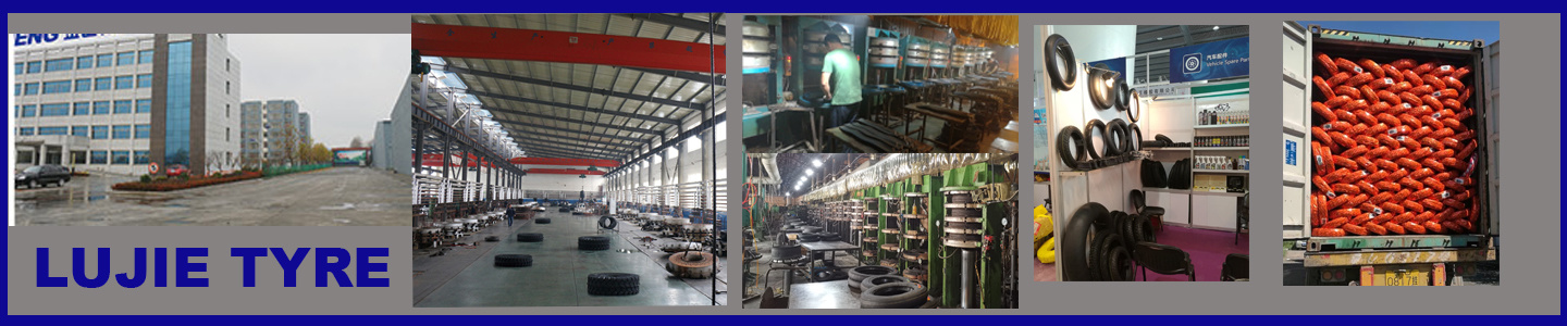 Shandong Lujie International Trade Co., Ltd.