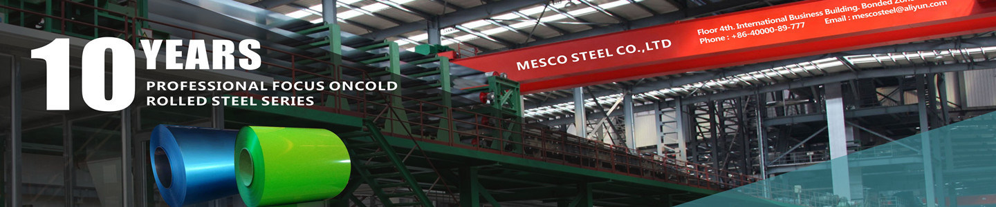 DA LIAN MESCO STEEL CO., LTD.