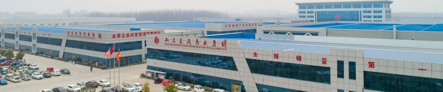 Shandong Zhushitang Medical Devices Co., Ltd.