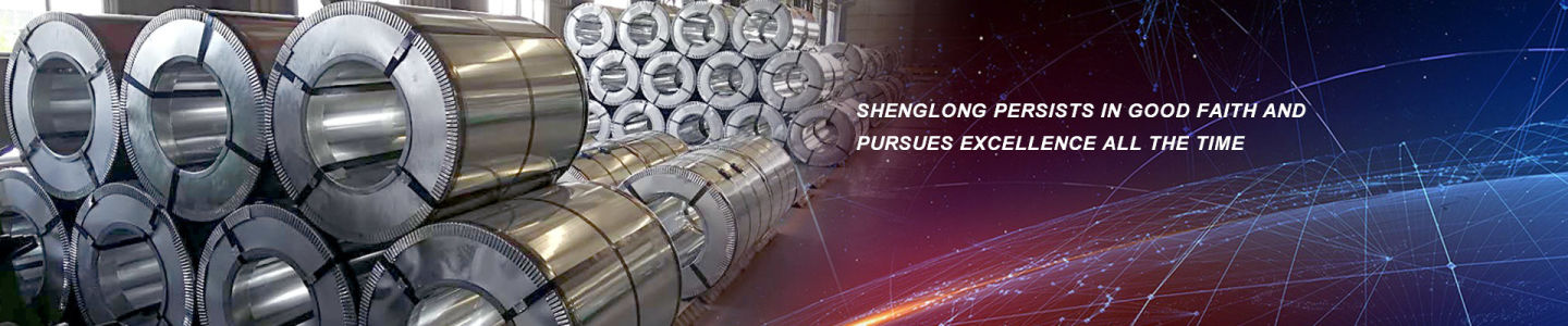 Shandong Shenglong Sheet Co., Ltd.