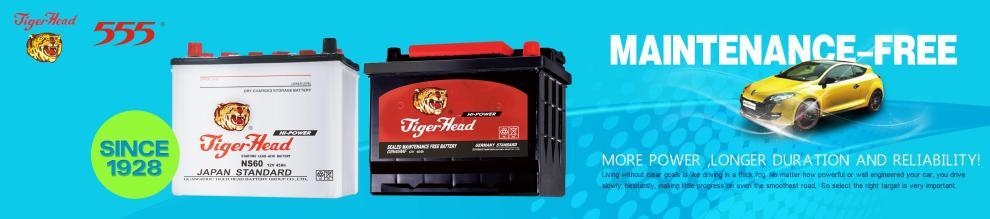 Guangzhou Tiger Head Battery Group Co., Ltd.
