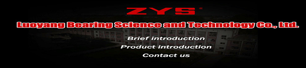 Luoyang Bearing Science & Technology Co., Ltd.