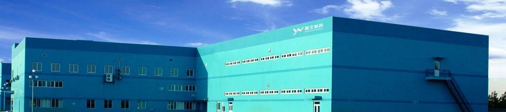 Shandong Yuwang Pharmaceutical Co., Ltd.