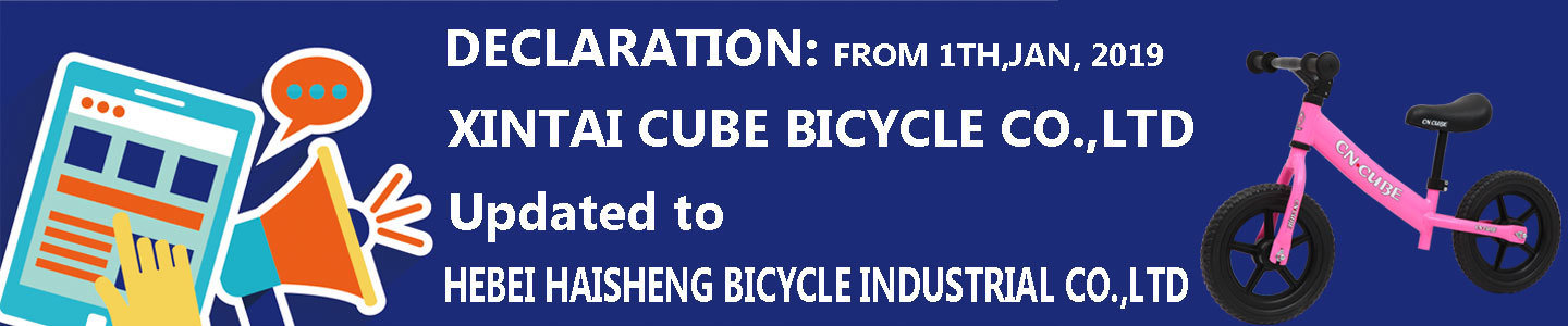 Hebei Haisheng Bicycle Industrial Co., Ltd.