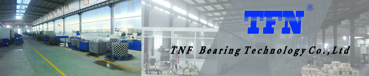 Shandong TFN Bearing Industry Co., Ltd.