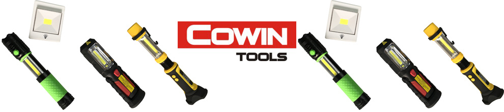 Jinhua Cowin Import & Export Co., Ltd.