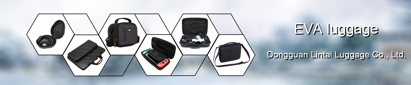 Dongguan Lintai Luggage Co., Ltd.