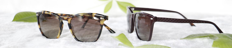 c3797ded5dea8 WENZHOU FC OPTICS LIMITED. Acetate Sunglasses