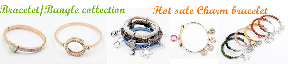 Hailee (Dongguan) Fashion Jewelry Co., Ltd.