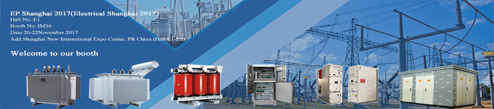 Shandong Yangxin Genshen Electric Co., Ltd.