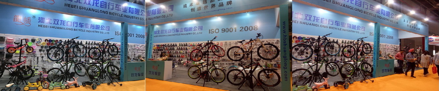 Guangzong Shuanglong Bicycle Industry Co., Ltd.