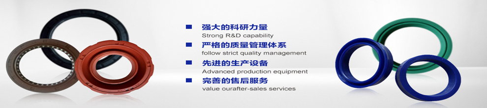 Zhalaiteqi Fengqing Mechanical Seal Parts Co., Ltd.