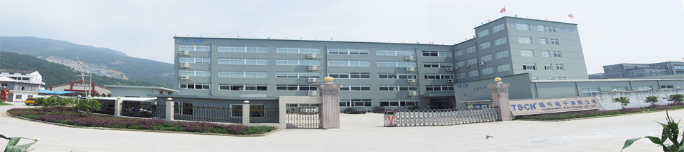 Zhejiang Tongsheng Electronic Co., Ltd.
