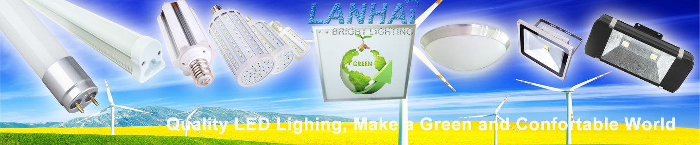 Shenzhen Lanhai Bright Lighting Technology Co., Ltd.