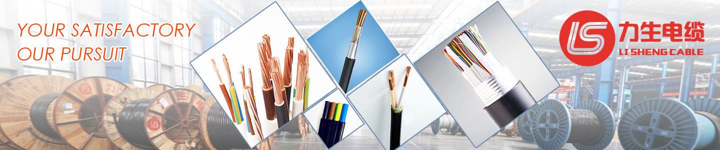 Hubei Lisheng Power Cable Co., Ltd.