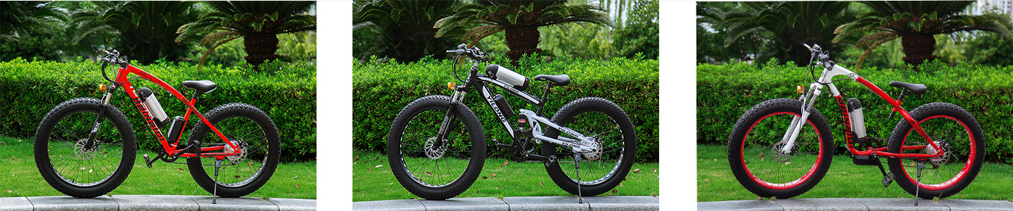 Yiwu Longdeng Electric Bicycle Co., Ltd.