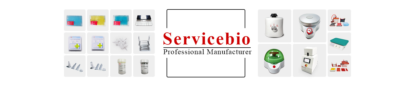 Wuhan Servicebio Technology Co., Ltd.