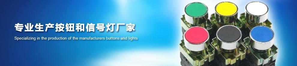 Yueqing Tianyi Electric Co., Ltd.