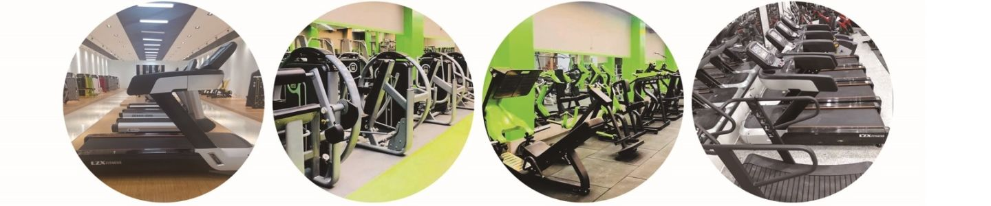 Shandong Lizhixing Fitness Technology Co., Ltd.