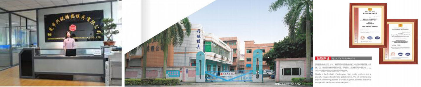Dongguan Xinrui Precision Mold Co., Ltd.
