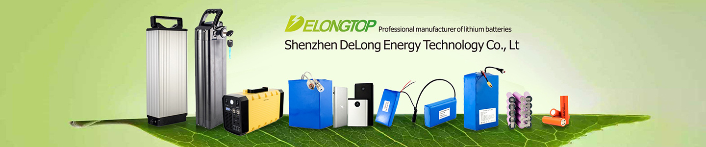 Dongguan Delong New Energy Technology Co., Ltd.