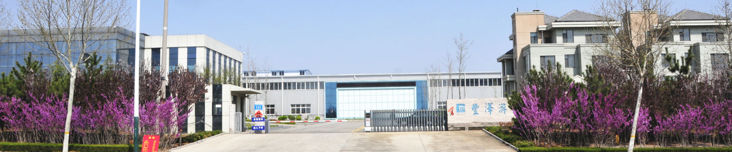 Shandong Fengze Intelligent Equipment Co., Ltd.