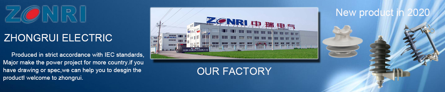 Zhong Rui Electric Co., Ltd.