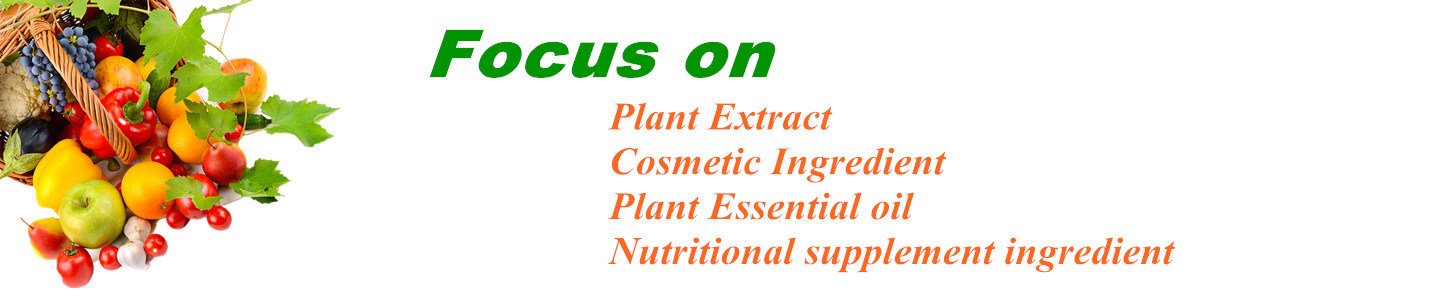 Shaanxi Shineherb Biotech Co., Ltd.