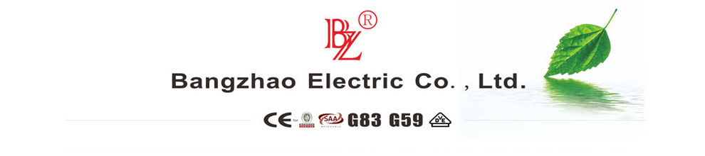 Yueqing Bangzhao Electric Co., Ltd.