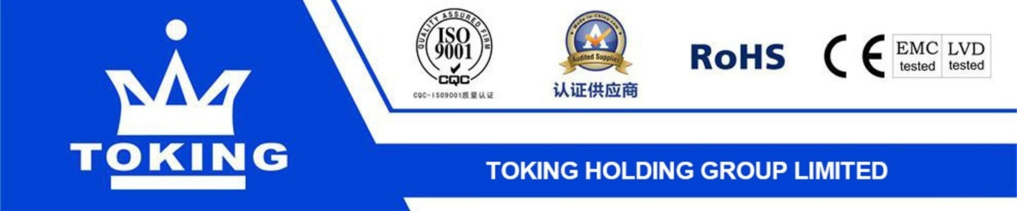 TOKING HOLDING GROUP LIMITED