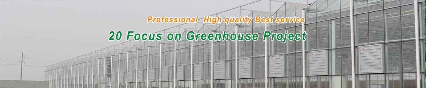 Shouguang Zenong Greenhouse Engineering Co., Ltd.
