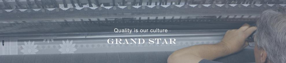 Fujian Grand Star Technology Co., Ltd.