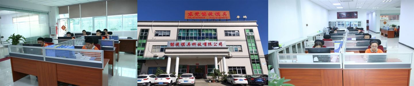 Dongguan Longeron Mold Technology Co., Ltd.