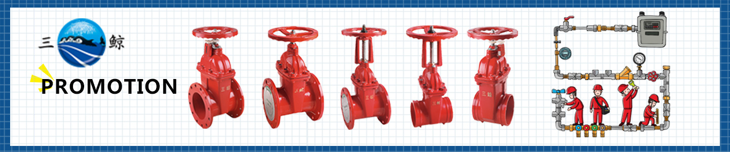 Fujian Haijing Fire-Fighting Co., Ltd.