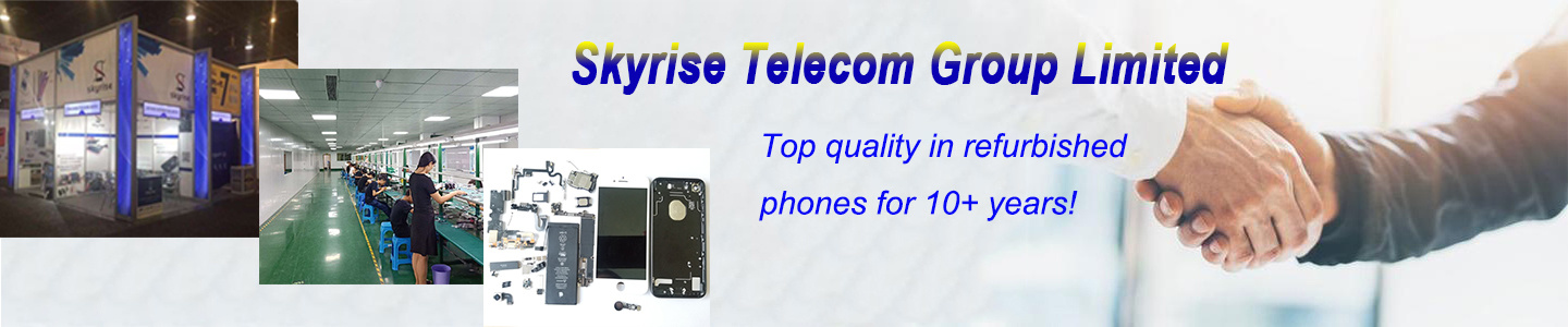 Skyrise Telecom Group Limited
