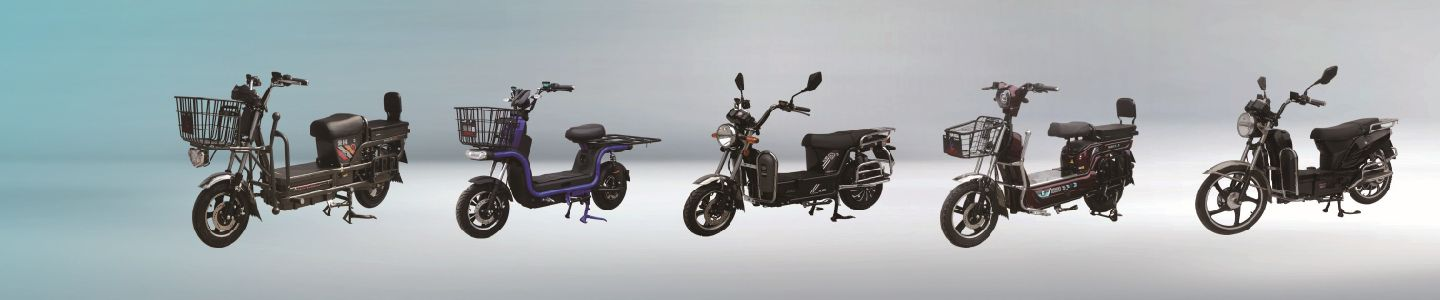 Wuxi Yang Brothers Import and Export Co., Ltd.