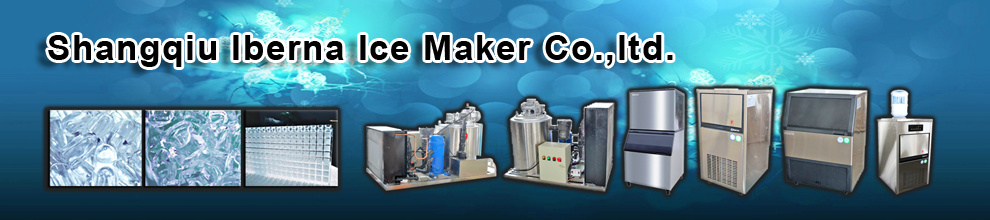 HENAN IBERNA ICE MAKER CO., LTD.