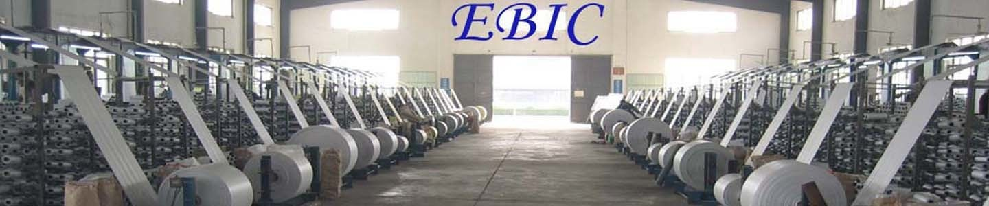 EBIC International Co., Limited