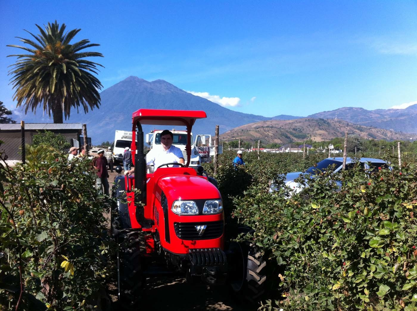 Lovol tractor working in a garden in Brazil