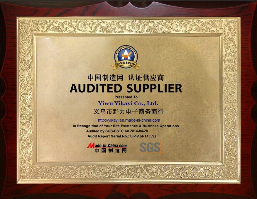 Audited Supplier of Made-in-China.com by SGS