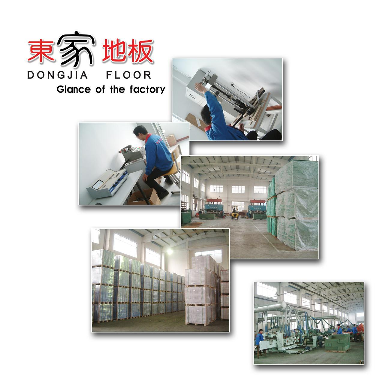 Glance of Dongjia Factory