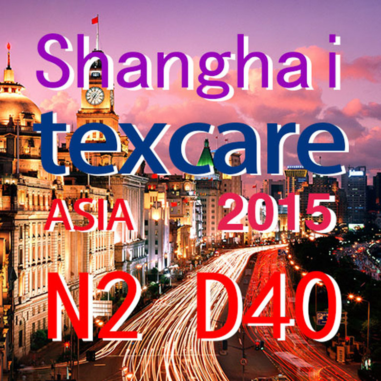 2015 Shanghai International Fair