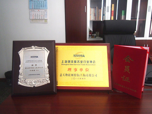 Director of Shanghai Steel Service Trade Association