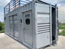 Container Type Gas Generator Set in Changyuan, Henan Provice
