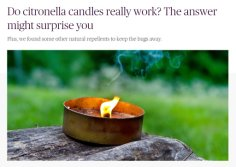 WHY IS CITRONELLA