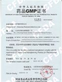 8.GMP-Lyophilized Powder for Injection, Powder for Injection
