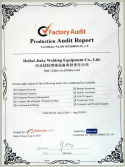 Production Audit Report