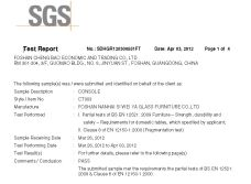 CT003 SGS TEST REPORT