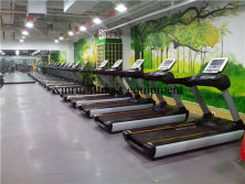 Treadmills in our customer gym