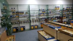 Welcome to Visit our Sample Room